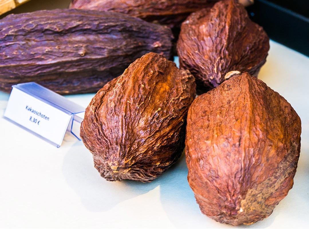 chocolART / echte Kakaobohnen