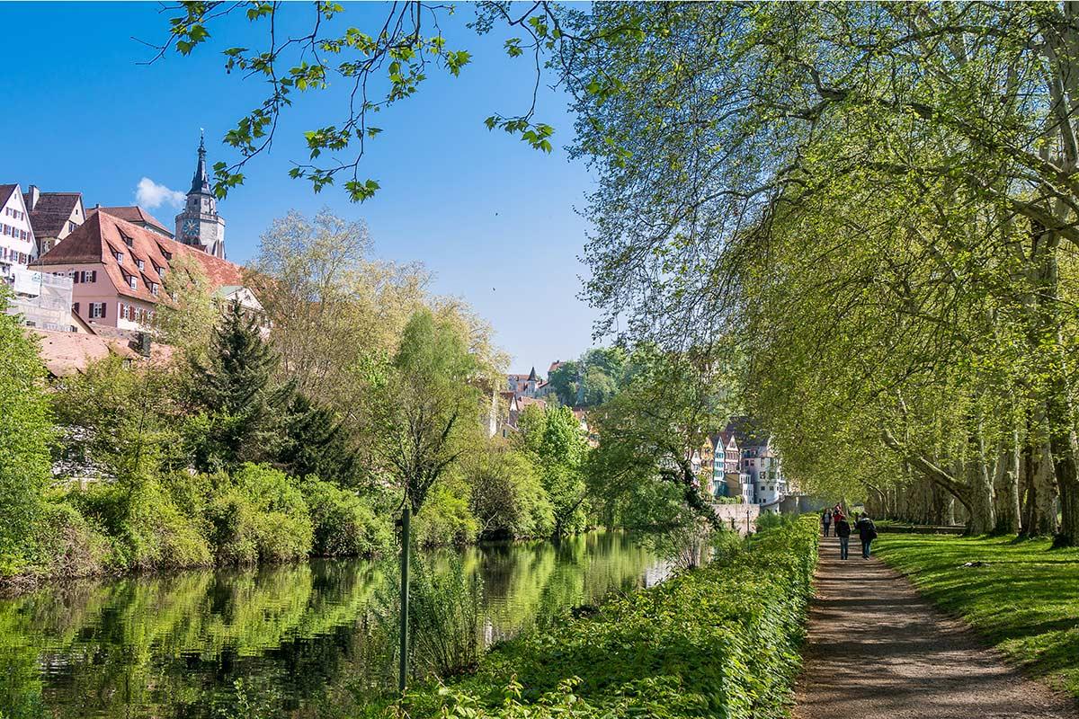 Auf der Neckarinsel mit Blick auf Stiftskirche