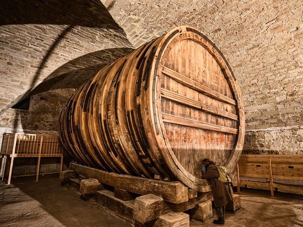 Das Riesenweinfass im Keller von Schloss Hohentübingen