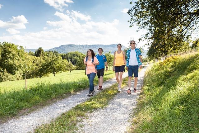 Premium- Wanderweg Firstwaldrunde