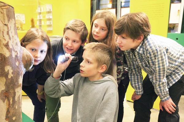 Führungen durchs Stadtmuseum