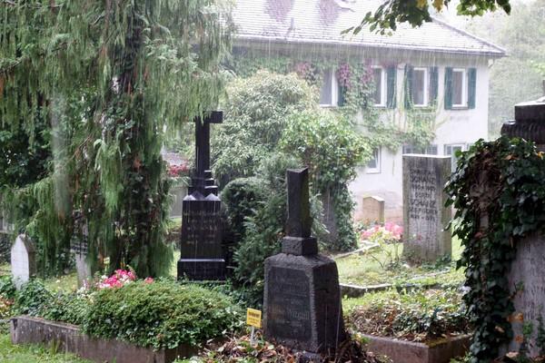 Der Tübinger Stadtfriedhof